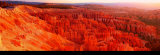 Bryce Canyon Print by Alain Thomas