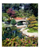 Bridge in Japanese Garden Photographic Print by Elaine Plesser