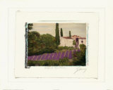 Burgundy Region, Paris Prints by Ginny Ganong Nichols