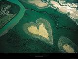 Coeur de Voh Prints by Yann Arthus-Bertrand