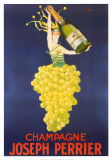 Champagne Posters by Colette Stall