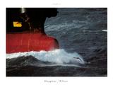 Le dauphin pilote Posters par Philip Plisson