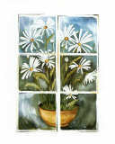 Daisies at the Window Art by Sonia P.