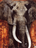 Elephant Print by Fabienne Arietti