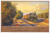 Wunderbares Kalifornien (Kleinformat) Kunst von Kerne Erickson