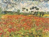 Field of Poppies, Auvers-Sur-Oise, c.1890 Poster von Vincent van Gogh