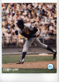 Ferguson Jenkins Photo