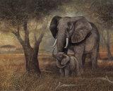 Sanfte Berührung Kunstdrucke von Ruane Manning