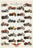 La leyenda Harley Davidson Pósters