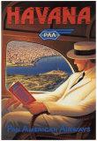 Havana Sztuka autor Kerne Erickson