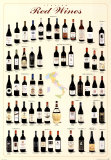 Vins rouges italiens Posters