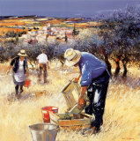 La cueillette des olives Posters by Andre Deymonaz