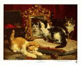 Kätzchen, 1893 Poster von Charles Van Den Eycken