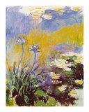 Les Agapanthes Prints by Claude Monet