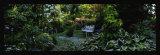 Les jardins d'Angelique Kunstdrucke von Alain Le Toquin