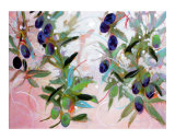 Olives Giclee Print by Ann Tuck