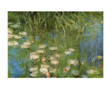 Nymph&#233;as de l&#39; orangerie &#224; Giverny Affiches par Claude Monet