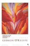 Czerwony paciorecznik (Red Canna) Reprodukcje autor Georgia O'keeffe