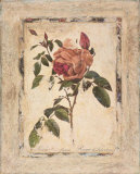 Rose Texture II Print by Joyce Combs