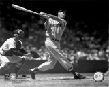 Ted Williams - Batting (sepia) Photo