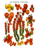 Tomates Poster