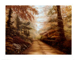 The Road to Shepherd Lake Prints by Betsy Brown
