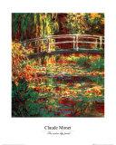 El estanque de los nenúfares Lámina por Claude Monet