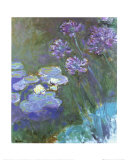 Water Lilies and Agapanthus Print by Claude Monet