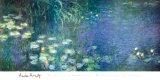 Nenúfares, mañana Lámina por Claude Monet