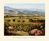 Vineyards to Vaca Mountains Posters by Ellie Freudenstein