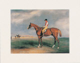 Velocipede Prints by John E. Ferneley