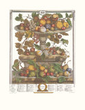 Twelve Months of Fruits, 1732, June Print by Robert Furber