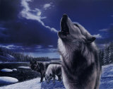 Howling Wolves Poster von Kevin Daniel