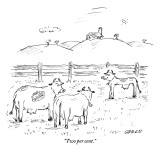 """Two per cent."" - New Yorker Cartoon Premium Giclee Print by David Sipress"