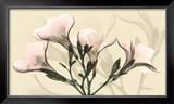 Misty Reflection Oleander Posters by Albert Koetsier