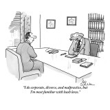"""I do corporate, divorce, and malpractice, but I'm most familiar with leas…"" - New Yorker Cartoon Premium Giclee Print by Leo Cullum"