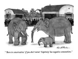 """'Born in conservation,' if you don't mind.  'Captivity' has negative conn…"" - New Yorker Cartoon Premium Giclee Print by J.B. Handelsman"