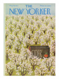 The New Yorker Cover - May 19, 1973 Premium Giclee Print by Ilonka Karasz