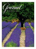 Gourmet Cover - April 1994 Regular Giclee Print by Julian Nieman