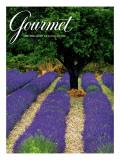 Gourmet Cover - April 1994 Premium Giclee Print by Julian Nieman