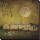 Sheep Under a Harvest Moon Stretched Canvas Print by Dawne Polis