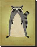 The Artful Raccoon Stretched Canvas Print by John Golden