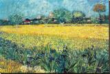 Zicht op Arles met irissen Kunstdruk op gespannen doek van Vincent van Gogh