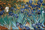 Blå iris, Saint-Remy, ca. 1889|Irises, Saint-Remy, c.1889 Trykk på strukket lerret av Vincent van Gogh