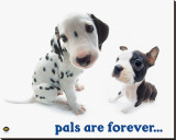 Pals Are Forever Stretched Canvas Print by Yoneo Morita