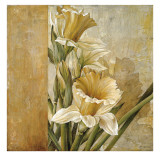 Champagne Daffodils II Posters by Linda Thompson