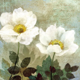 Anemone II Print by Keith Mallett