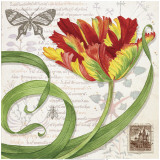 Tulip I Prints by Lynnea Washburn