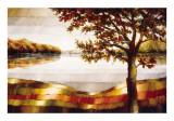 Lake Mamry Poster by Zenon Burdy