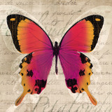 Butterflies III Print by Tandi Venter